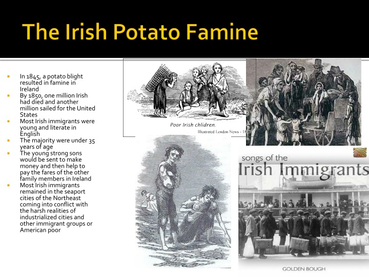 In 1845, a potato blight resulted in famine in Ireland