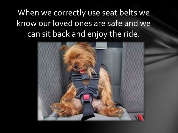 When we correctly use seat belts we know our loved ones are safe and we can sit back and enjoy the ride.