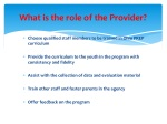 what is the role of the provider