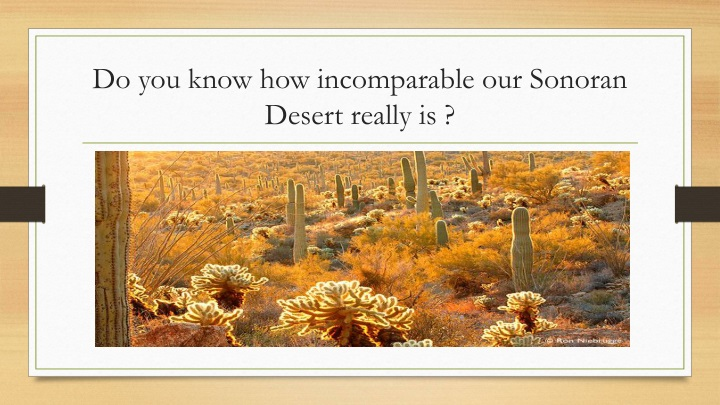Do you know how incomparable our Sonoran Desert really is ?