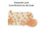 statewide look contributions by zip code