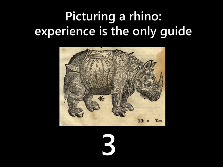 Picturing a rhino: