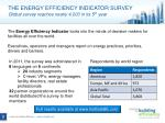 the energy efficiency indicator survey