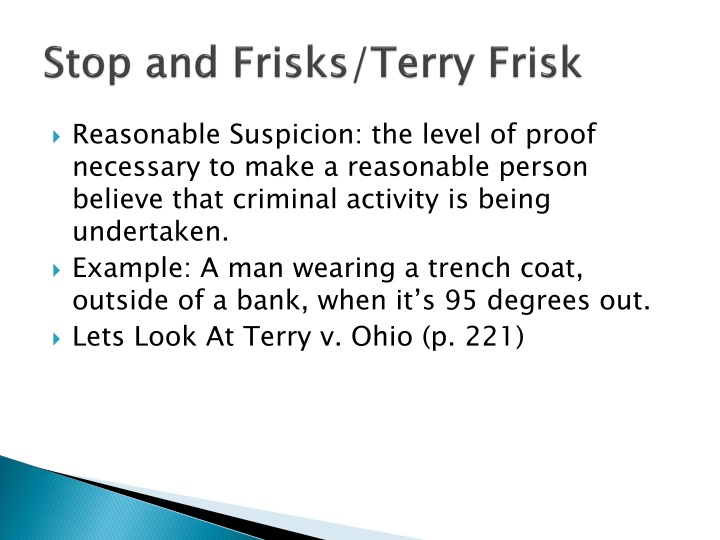 Stop and Frisks/Terry Frisk