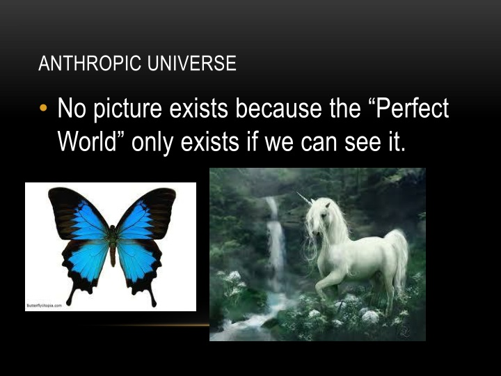 Anthropic Universe