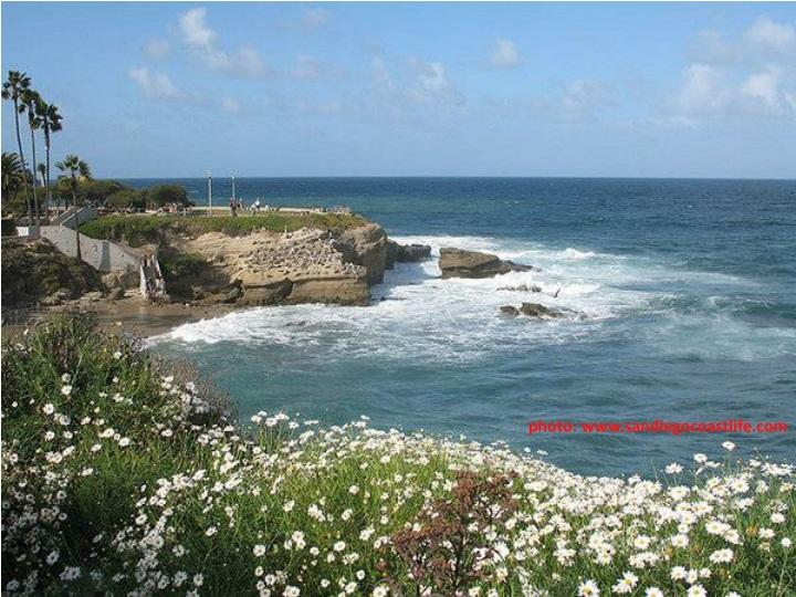 photo: www.sandiegocoastlife.com