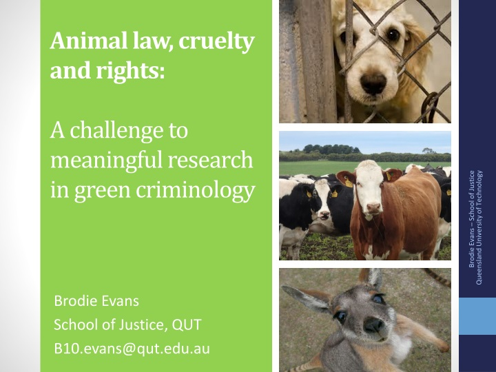 animal law cruelty and rights a challenge to meaningful research in green criminology