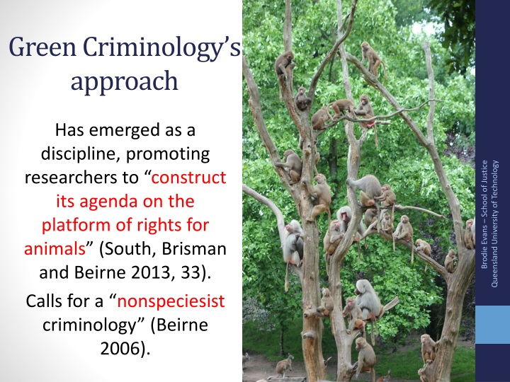 Green Criminology's approach