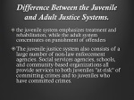 difference between the juvenile and adult justice systems