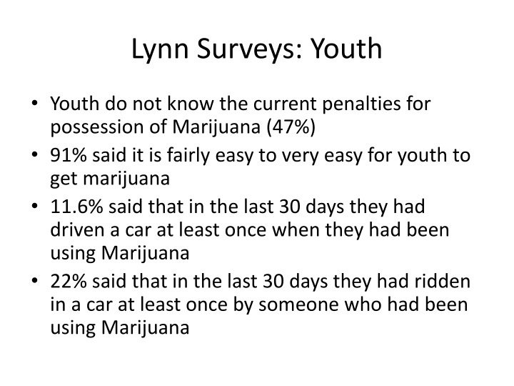 Lynn Surveys: Youth