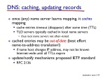 dns caching updating records