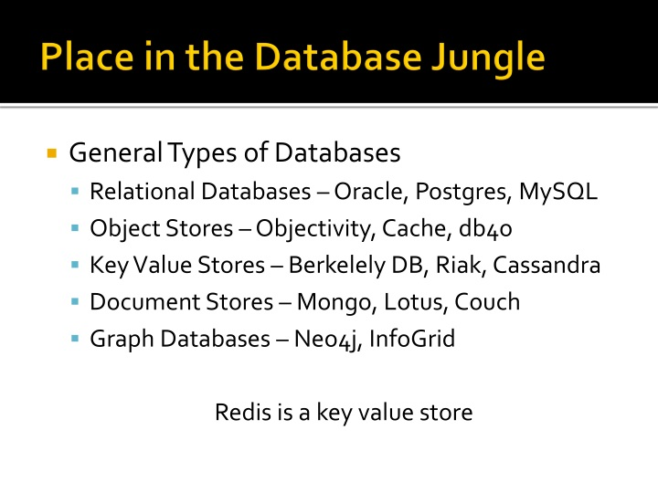 Place in the Database Jungle
