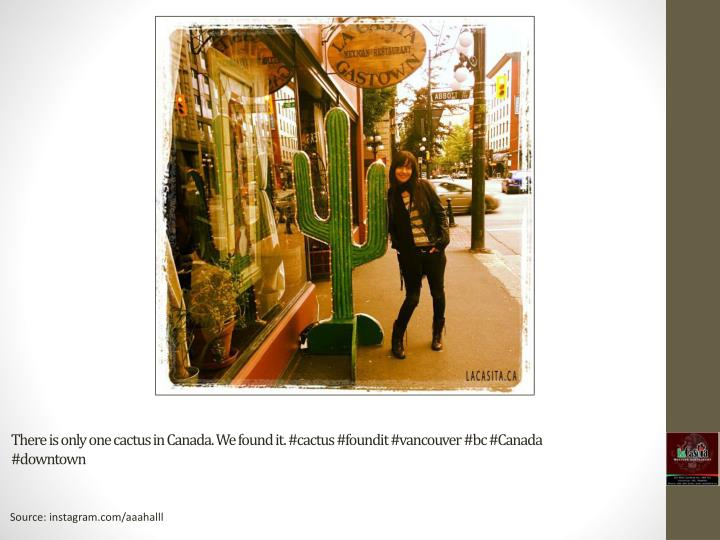 There is only one cactus in canada we found it cactus foundit vancouver bc canada downtown