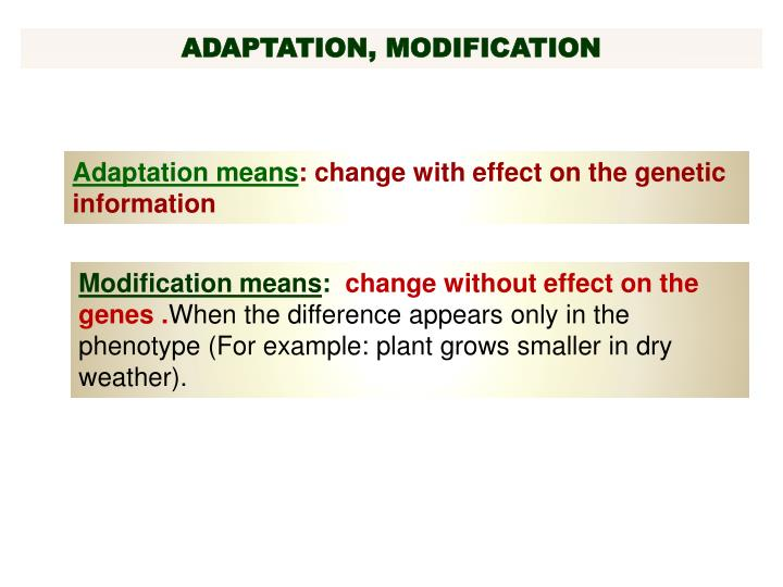 ADAPTATION, MODIFICATION