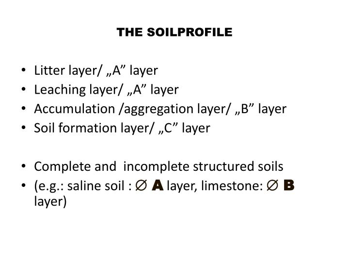 THE SOILPROFILE