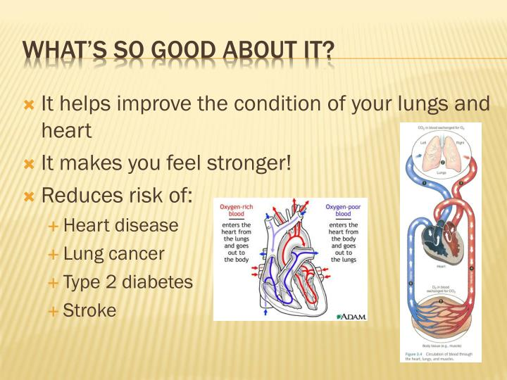 It helps improve the condition of your lungs and heart