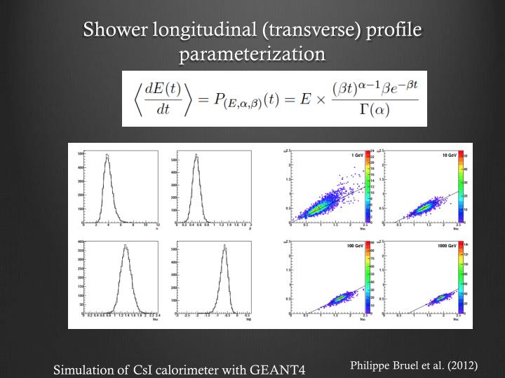 Shower longitudinal