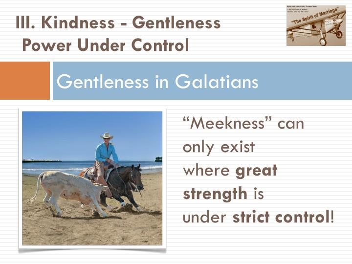 III. Kindness - Gentleness