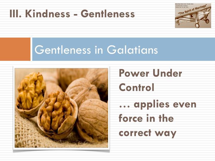 III. Kindness - Gentleness