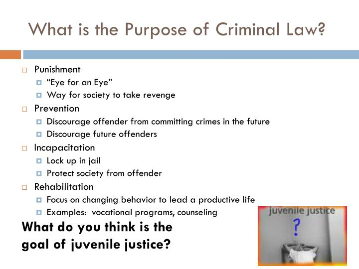 purposes and theories of punishment Video created by vanderbilt university for the course justice, mercy and mass incarceration this module takes up the questions of crime and punishment what is crime and what are the purposes of punishment.