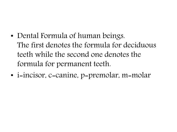 Dental Formula of human beings.