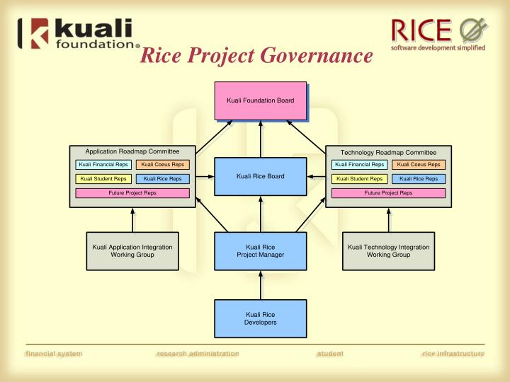 Rice Project Governance