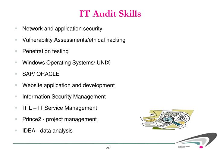 IT Audit Skills
