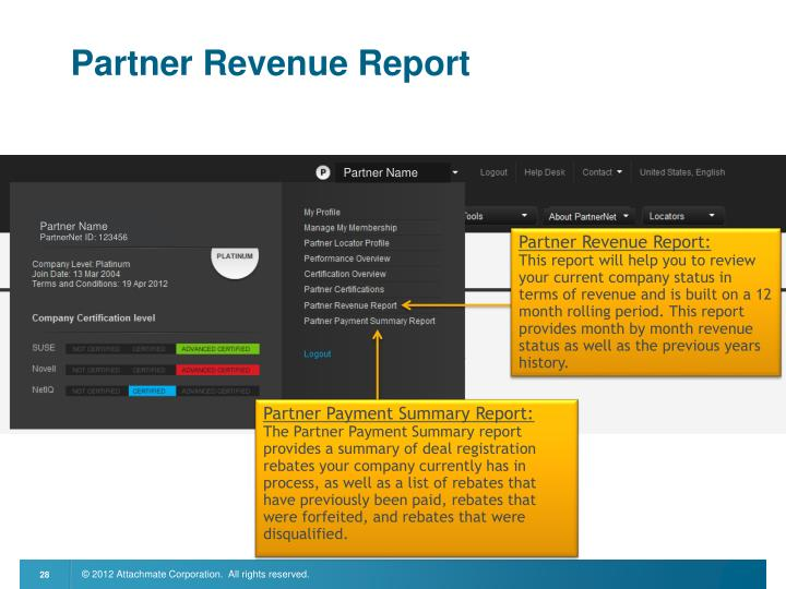 Partner Revenue Report