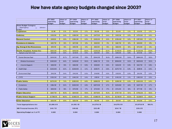 How have state agency budgets changed since 2003?
