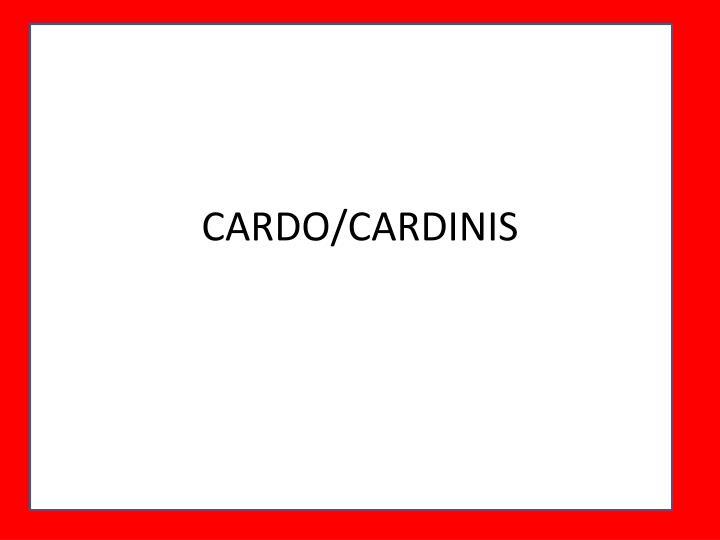 CARDO/CARDINIS