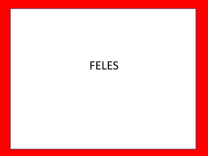 FELES