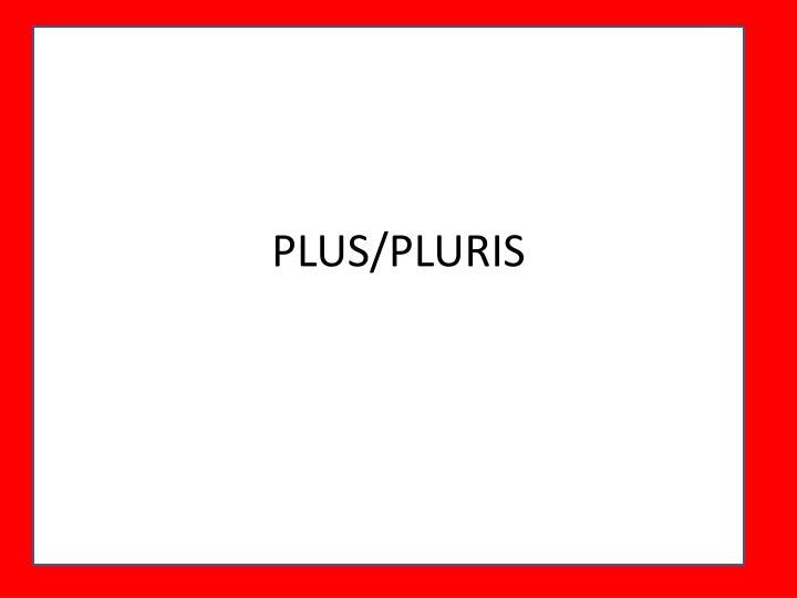 PLUS/PLURIS
