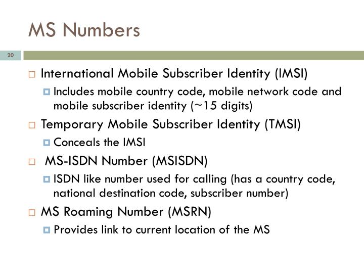 MS Numbers