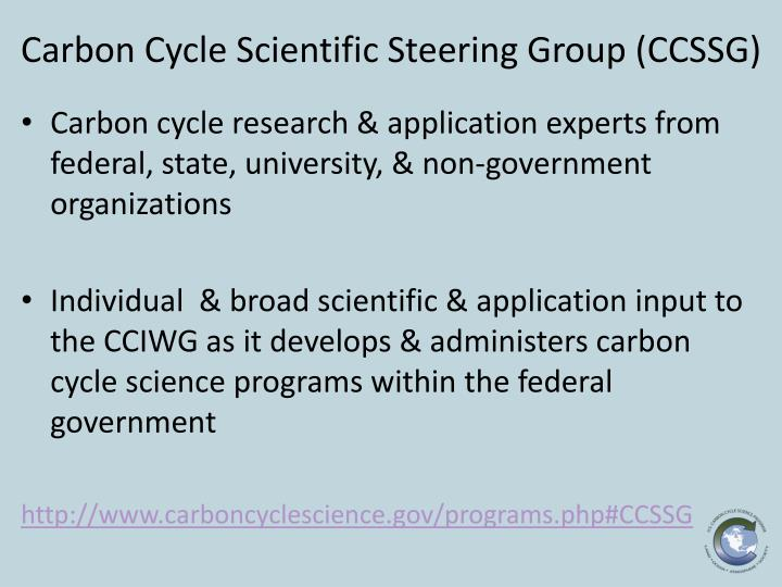 Carbon Cycle Scientific Steering Group (