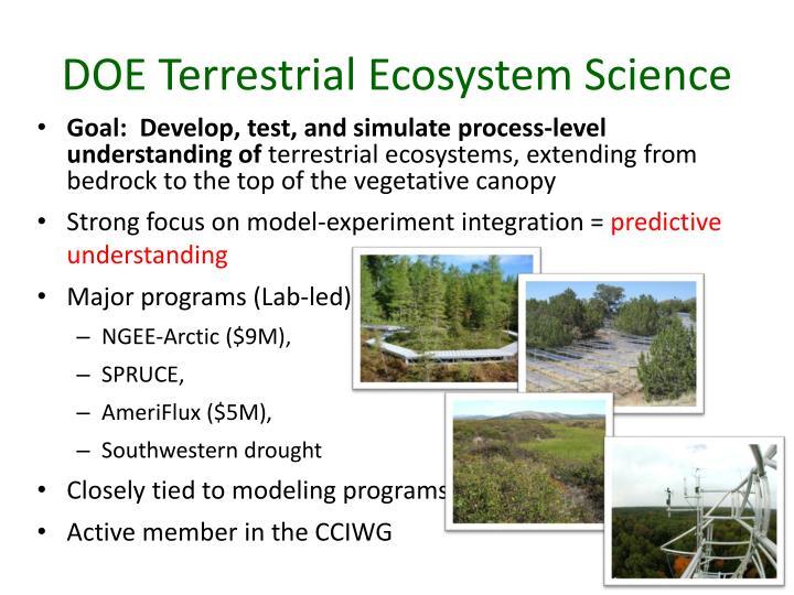 DOE Terrestrial Ecosystem Science