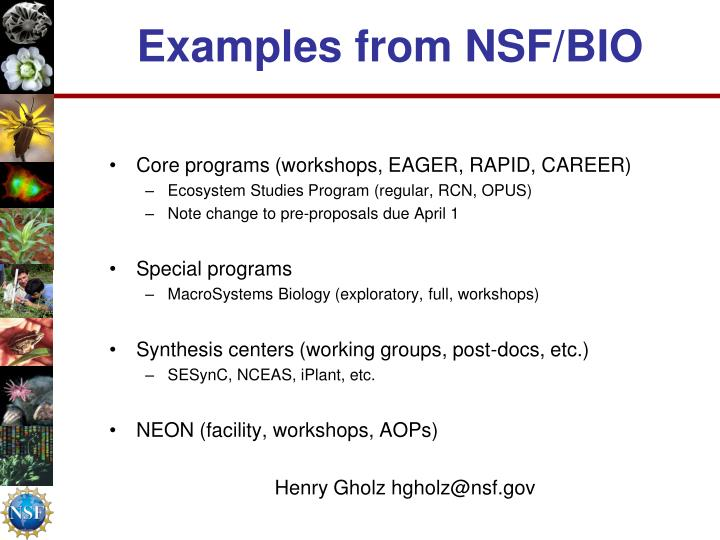 Examples from NSF/BIO