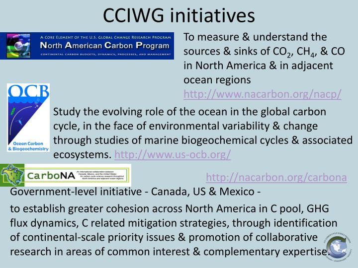 CCIWG initiatives