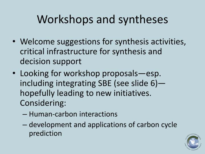 Workshops and syntheses