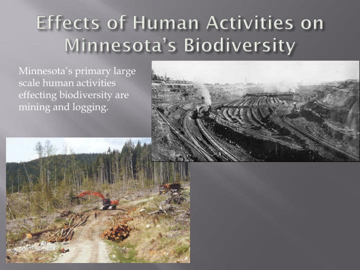 Effects of Human Activities on Minnesota's Biodiversity