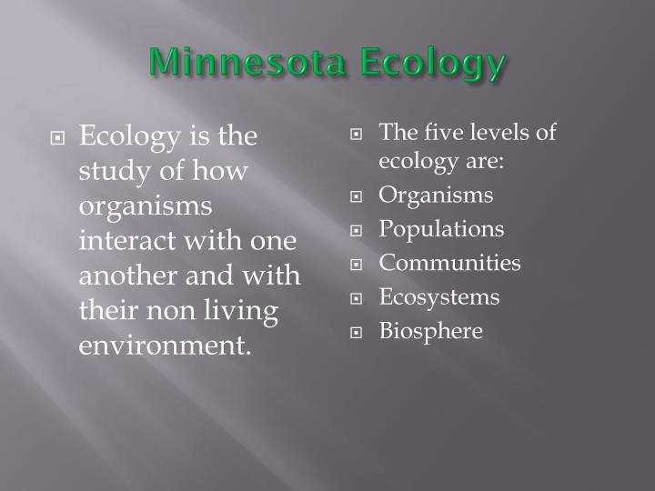Minnesota Ecology