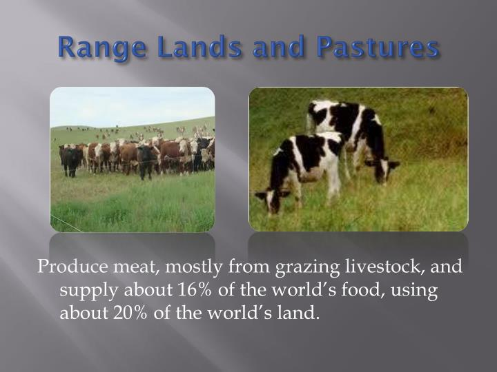 Range Lands and Pastures