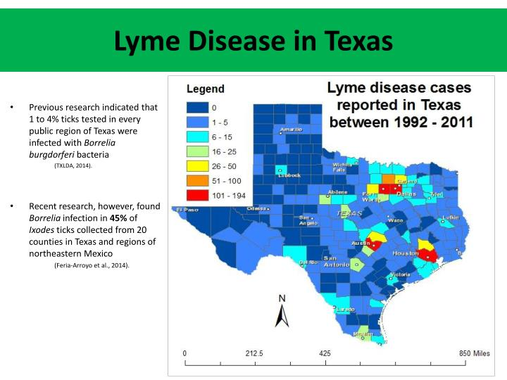 Lyme Disease in Texas