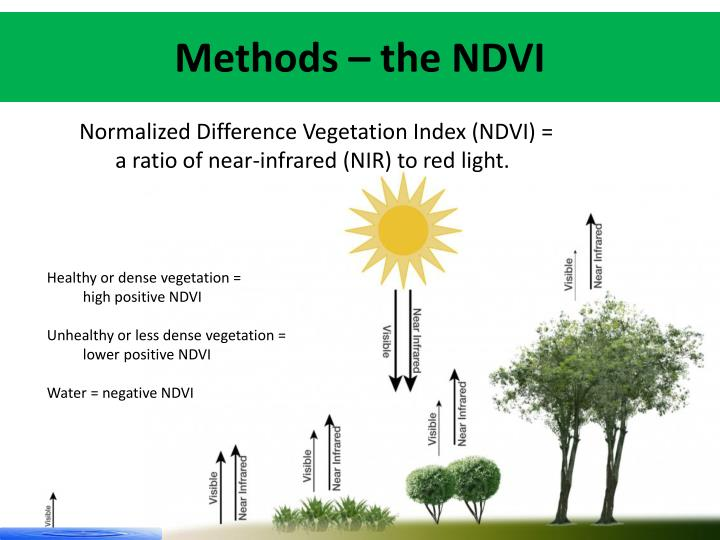 Methods – the NDVI