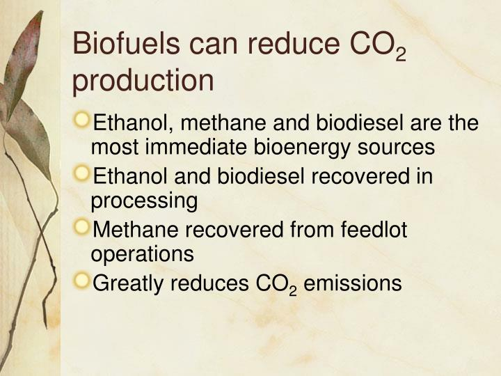 Biofuels can reduce CO