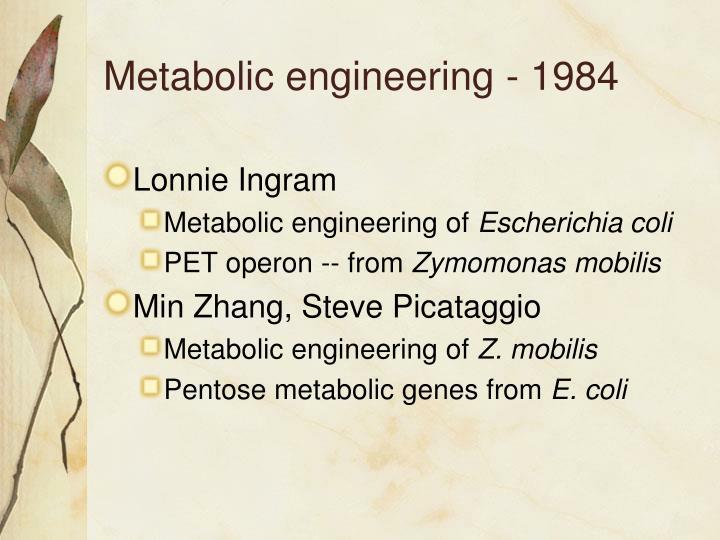 Metabolic engineering - 1984