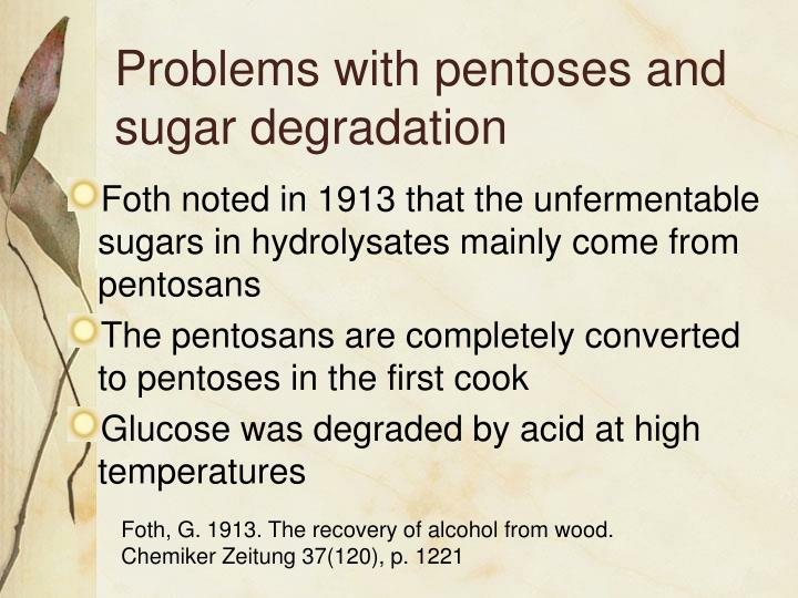 Problems with pentoses and sugar degradation