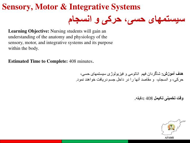 Sensory, Motor & Integrative Systems