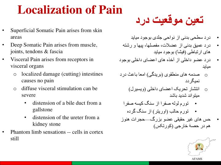 Localization of Pain