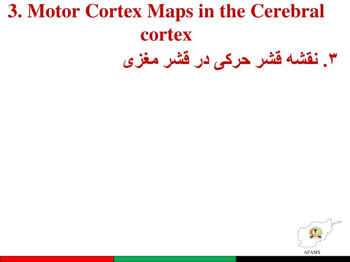 3. Motor Cortex Maps in the Cerebral cortex