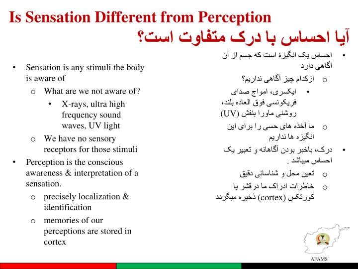 Is Sensation Different from Perception